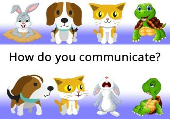 Communication Styles Assessment